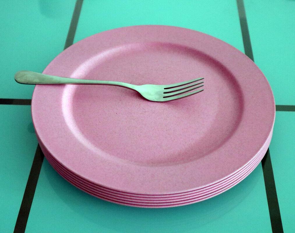 Greenandlife 10inch/6pcs Dishwasher Microwave Dinner